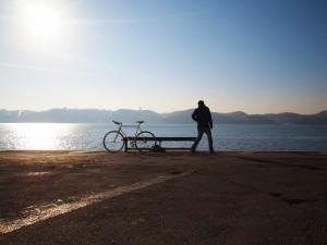 bike share worldwide johanson3